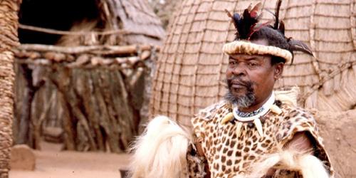 zulu-chefe